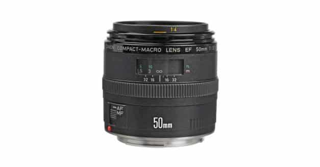 Canon Working on New 50mm F/2.5 Macro Lens