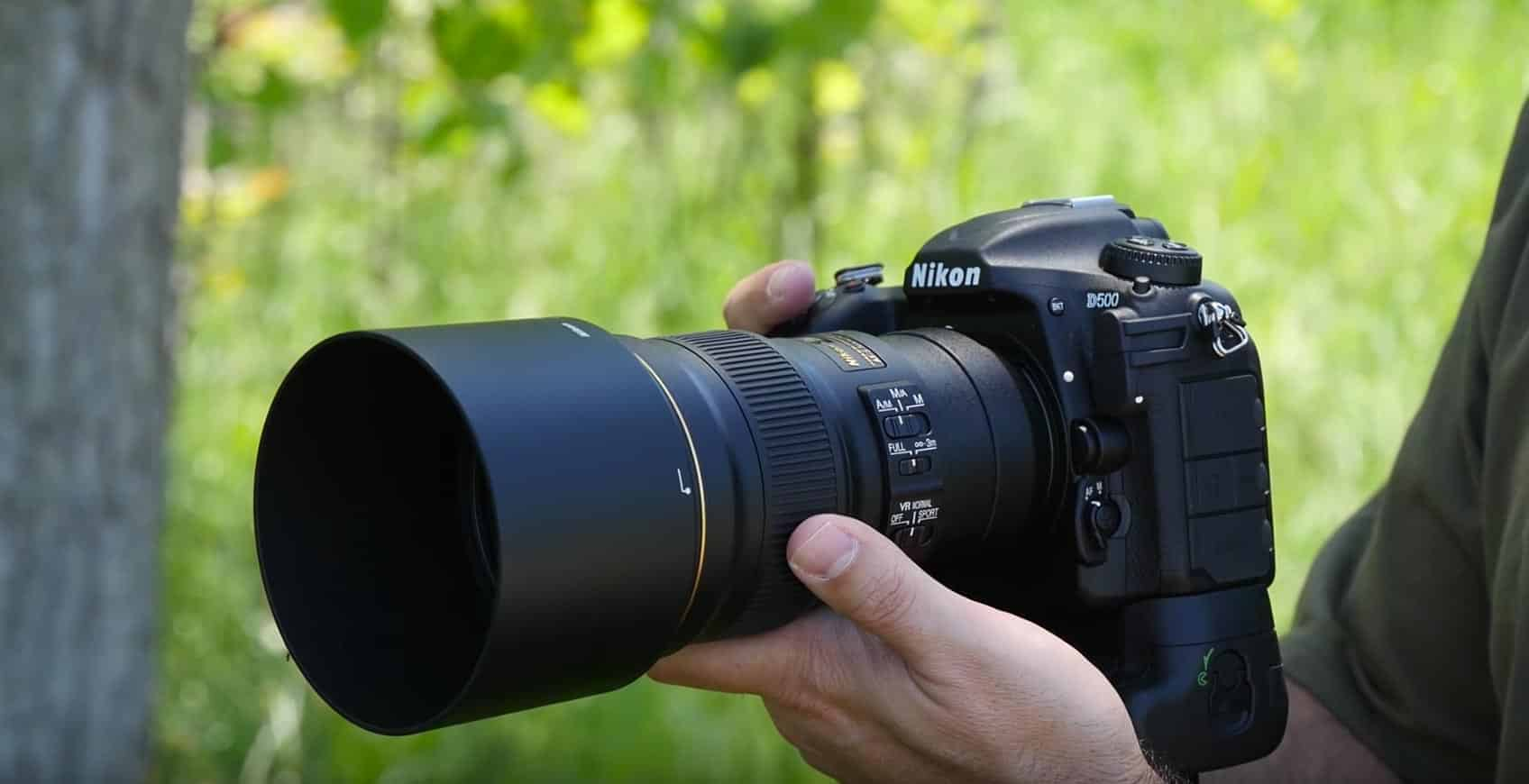 Nikon D500 Review For Wildlife Photography