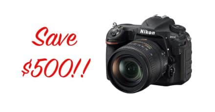 New Nikon Rebates! Save $500 on the Nikon D500 and 16-80mm Lens Kit!