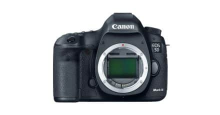 Canon EOS 5D Mark IV Prospective Release Date and Blurry Photos!