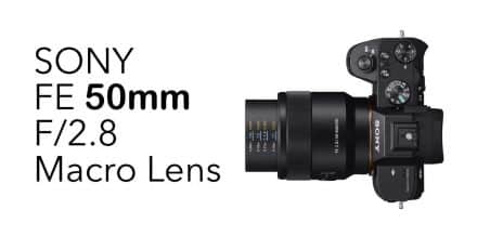Sony Announces the Sony FE 50mm F/2.8 Macro Lens