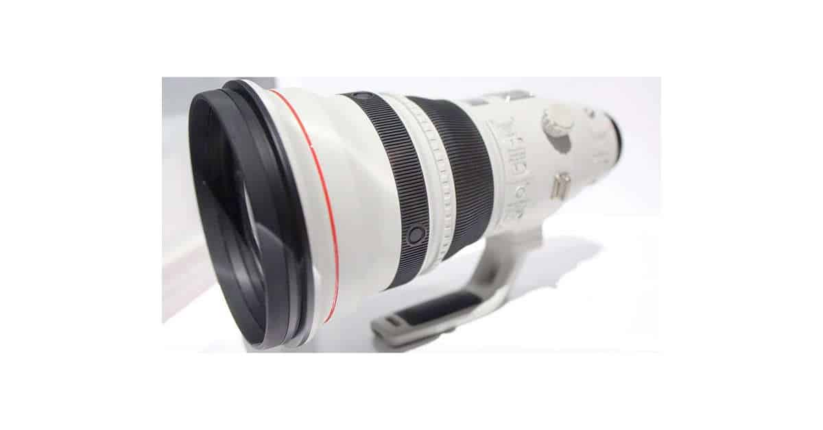 Canon EF 600MM F/4 DO to Arrive Late 2017?