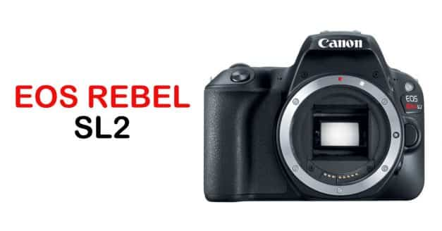 Now in Stock: Canon EOS Rebel SL2