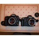 More Nikon D850 Pictures!